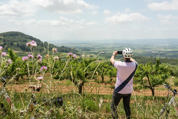 Bike tour in the land of Cava image 3