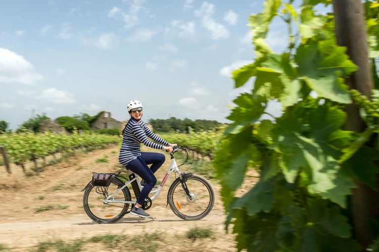 Bike tour in the land of Cava image 1